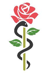 logo rozebeek